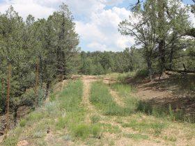 365 MacDonnell Loop, Texas Creek CO 81223