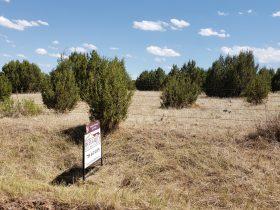 TBD W Red Creek Springs Rd Pueblo CO 81005